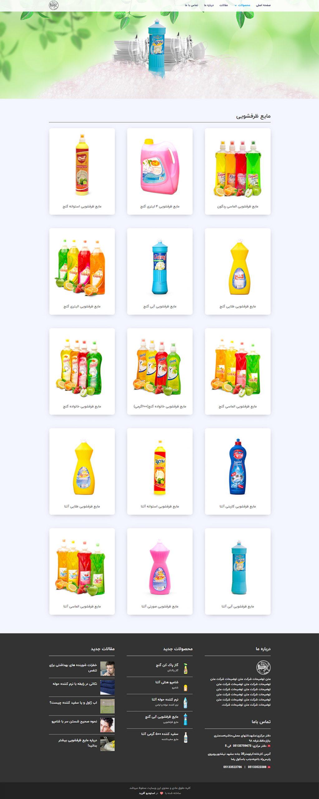 طراحی سایت مواد شوینده